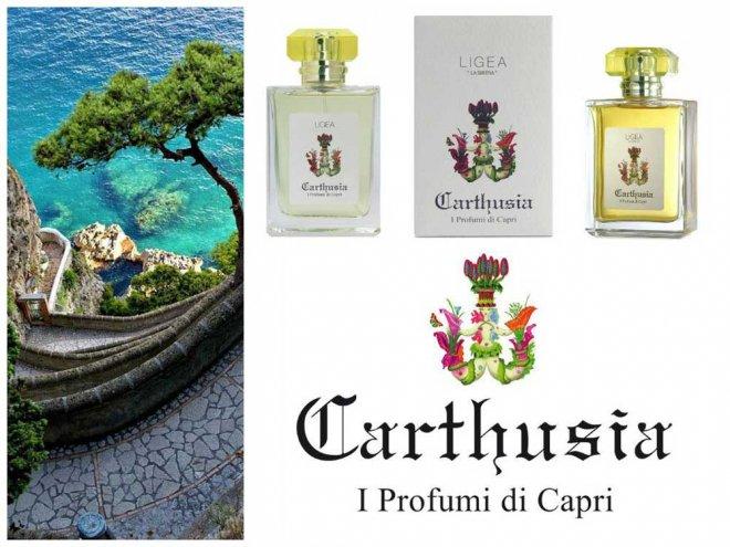9 Carthusia-fragrance